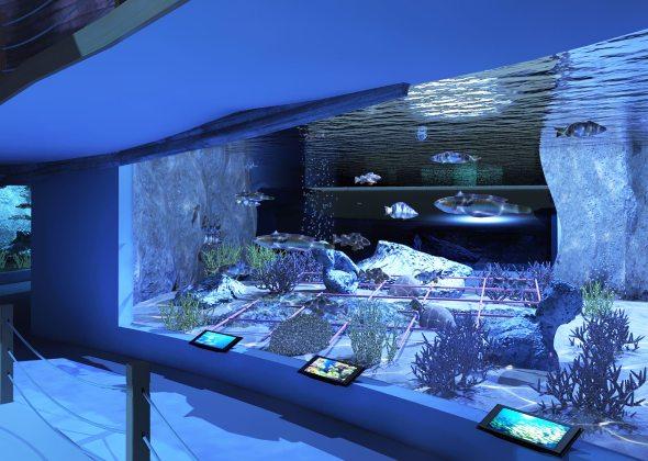 Acquario di roma sea life expo for Pesci acquario