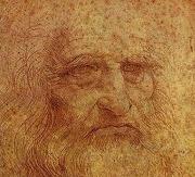 Autoritratto Leonardo Musei Capitolini 2015