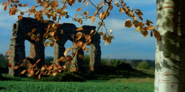 Segui la volpe Parco Appia Antica autunno 2020